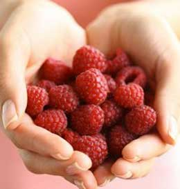 Raspberry ketone ingredient