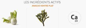 Anaca3 Ventre Plat Ingredients